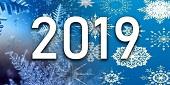 Новый год 2019.