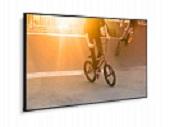 NEC MultiSync P754Q создаст безупречную картинку сверхвысокого разрешения при ярком свете